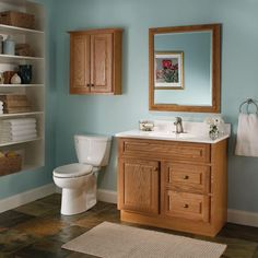 Best Paint Color For Bathroom With Oak Cabinets