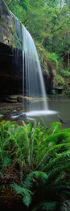 Lower Kalimna Falls, Great Otway National Park, Victoria - Australia