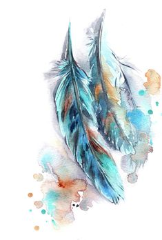 Feather Painting - Feathers by Sophia Rodionov