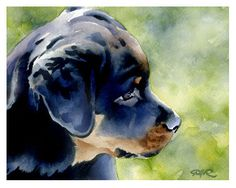 Watercolor art prints and originals by artist DJ Rogers by Rottweiler Love, Rottweiler Puppies, Puppy Gifts, Dog Owners, Best Dogs, Dj, Art Prints, Pets, Watercolor Painting