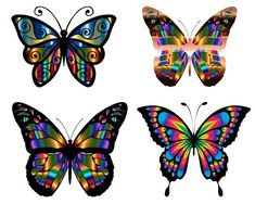 Check out our butterfly clipart selection for the very best in unique or custom, handmade pieces from our papercraft shops. Owl Clip Art, Butterfly Clip Art, Butterfly Images, Butterfly Wallpaper, Vintage Butterfly, Insect Clipart, 77 Diamonds, Butterfly Illustration, Photoshop