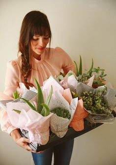 $6 gift idea: paper wrapped plants