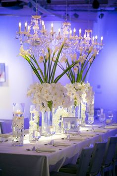 Tall white centerpieces with white phaleanopsis orchids and white calla lilies. Chandeliers. Submerged flower centerpieces. Head Table Flowers -Florals by Jenny Seven Degrees, Laguna Beach