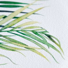 Palm leaves watercolor prints. For purchase on Etsy at Lexo prints.