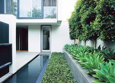 modern landscaping Jack Merlo Design mcm mid century