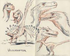 Toutes les tailles | Velociraptor 02 | Flickr: partage de photos!