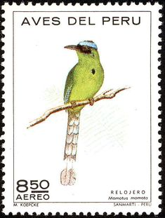 Andean Motmot stamps - mainly images - gallery format