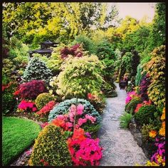 Beautiful garden path...... incredible!!!!