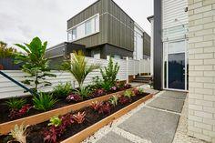 Brilliant Front Yard Landscaping With Bromeliads Ideas 24 Front Yard Landscaping, Landscaping Ideas, Backyard, Patio, Front Entrances, Landscape Plans, New Homes, Colours, Building