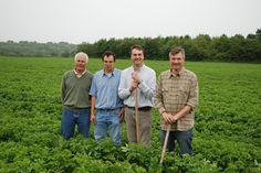 Les quatre producteurs de la Pompadour Label Rouge en 2009. Aujourd'hui, ils ont été rejoints par un cinquième : Jean-François