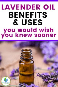 Lavender Essential Oil Uses and Benefits!
