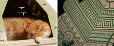 Cats hate whatever you buy them. Why? Because they're hard-wired to be ungrateful. But as you can see from these cardboard landmark play houses, not even a cat can resist the chance to spend a night in the White House.