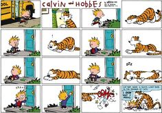 Calvin and Hobbes, I'M HOME! - Cat nap, noun: A quick, light doze in the manner of cats.  ...I KNOW what it means!