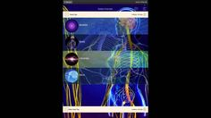 Genius Insight - Covering the 3 minute balancing protocol Try It Free, 3 Things, Insight, Ipad, Cover