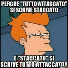I misteri della vita! Funny Photos, Funny Images, Funny Jokes, Hilarious, Italian Memes, Savage Quotes, Funny Moments, Vignettes, Haha