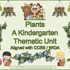 This product meets all your needs to implement an extremely effective thematic unit on plants. Your students will be exposed to the concepts and vo...