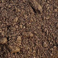 10 Easy Soil Tests | Rodale's Organic Life