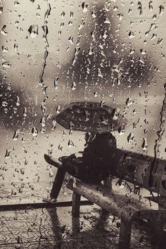"""Love this! """"Silent Rain"""" by Cao Anh Tuan"""