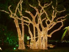 Hire a Pro to Hang Up Christmas Lights | Angie's List