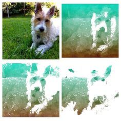 Popsicolor for iOS: A simple way to create watercolor-like photos