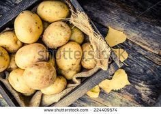 Raw Organic Golden Potatoes in the Wooden Crate on Aged Wood Planks Table.