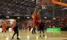 Opening game of the 2013 season for the Southland Sharks. Basketball Teams, Basketball Court, April 19, Team S, Sharks, Ranger, Seasons, Game, City