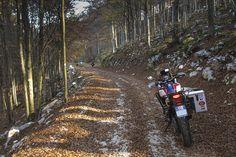Cansiglio - Piancavallo in moto - Due In Sella