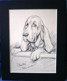 Vintage mounted 1939 Lucy Dawson Mac Bloodhound by Hollysprints, £10.75