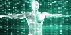#Actualité #projet Des chercheurs veulent créer un génome humain synthétique