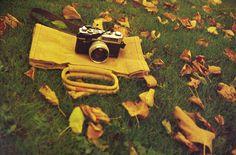 "A photo by ""ornella"" - Lomography"