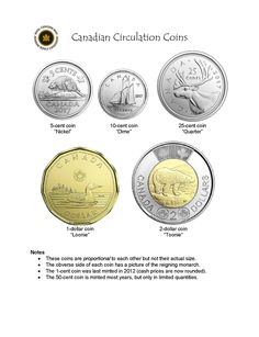 Canadian Circulation Coins Kindergarten Centers, Learning Centers, Math Centers, Canada For Kids, Canada Eh, Canadian Coins, Canadian History, Fun Facts For Kids, Teaching Money