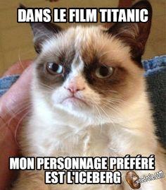 Gumpy Cat Cinéphile... image drole