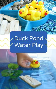 Duck Pond Sensory Play - Fantastic Fun & Learning - Duck Pond Sensory Play – Fantastic Fun & Learning Make this Duck Pond Water Play a fun water and sensory table for toddlers and preschoolers! Or a fun activity to add to a farm unit! Toddler Play, Toddler Preschool, Toddler Crafts, Preschool Ideas, Water Theme Preschool, Sensory Activities Toddlers, Spring Activities, Water Play Activities, Sensory Table