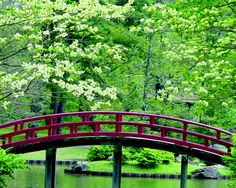 Memphis Botanic Gardens, Memphis TN