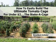 Tomato cage under $2