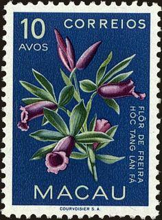 Old Stamps, Vintage Stamps, Macau, Envelope Art, Vintage Packaging, Flower Stamp, Mail Art, Stamp Collecting, Vintage Flowers