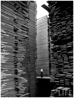 A man standing in the lumberyard of Seattle Cedar Lumber Manufacturing, 1939 Photographer is Alfred Eisenstadt. Vintage Photography, Street Photography, Art Photography, Sequence Photography, Contrast Photography, Black White Photos, Black And White Photography, Old Photos, Vintage Photos