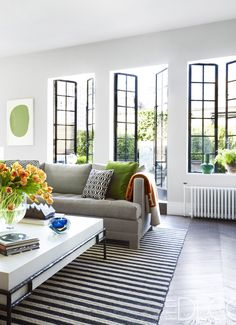 A clean, modern living room with steel frame windows looking out onto a lush terrace.