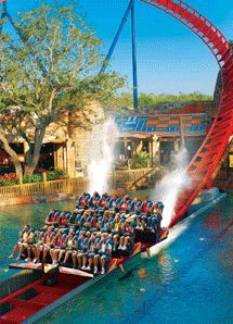 Great Busch Gardens ~ Tampa, Florida