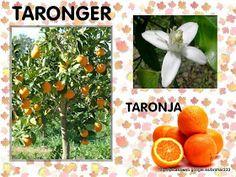 Dora, Autumn, Fall, Ludo, Natural, School, Printables, Toddler Girls, Picasa