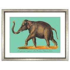 Check out this item at One Kings Lane! Carl Brodtmann, Elephant II
