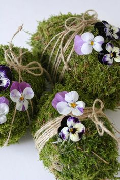 frohe ostern interessante kleine blümchen super süße und cooles bild The Effective Pictures We Offer You About barn wedding decor A quality picture can tell you many things. Floral Wedding Decorations, Diy Crafts To Do, Moss Garden, Ideias Diy, Little Flowers, Spring Crafts, Easter Crafts, Happy Easter, Easter Eggs