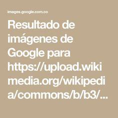 Resultado de imágenes de Google para https://upload.wikimedia.org/wikipedia/commons/b/b3/Chromosome-es.svg