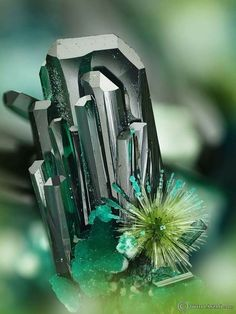 Atacamite, with Libethenite spray, Chile. Minerals And Gemstones, Rocks And Minerals, Caillou Roche, Beautiful Rocks, Beautiful Pictures, Mineral Stone, Rocks And Gems, Stones And Crystals, Gem Stones