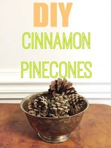 I decided to try my hand at DIY cinnamon pinecones with some essential oils I already had on-hand.