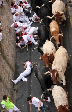 The 8am runs take place daily until July 14 with each charge broadcast on state television. And then, on the afternoon of each day, the same bulls face matadors in the ring