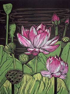 "Amanda's Art Blog: Woodblock Print: Lotus, Three Stages. Title: Lotus, Three Stages Paper: Magnani Pescia, 14"" x 18"" Image Size: 12"" x 16"" Block: Shina--4 blocks Ink: Akua Intaglio Edition size: 50"