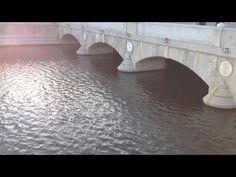 Puente del Rey, Madrid río. Madrid