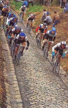 Tour des Flandres 1984
