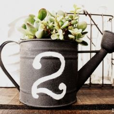 Forget about the old boring pots. Give your plants some live and colour with these unique garden containers you can make from waste and things you don't use anymore. Replacing the boring pots with some creative garden containers will make your gard Garden Planters, Succulents Garden, Garden Container, Succulent Planters, Metal Watering Can, Watering Cans, Suculentas Diy, Pots, Vintage Numbers